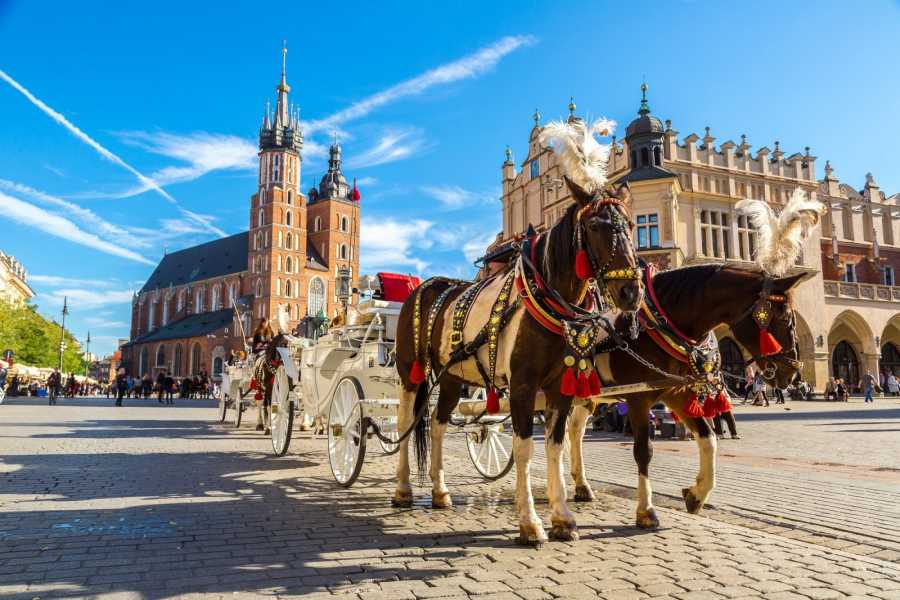 24/7/365 Travel Prague Cracow Taxi