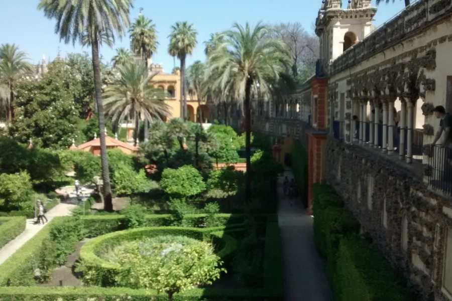 Sights and Bikes Day Tours Wonders of Seville
