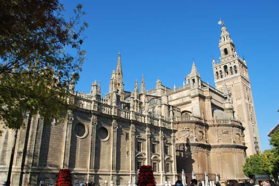 Sights and Bikes Day Tours Seville on your own