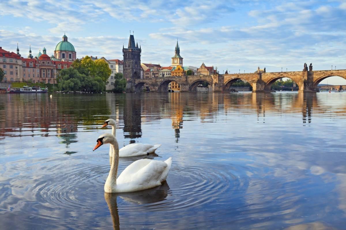 24/7/365 Travel Cesky Krumlov Prague Shared Shuttle