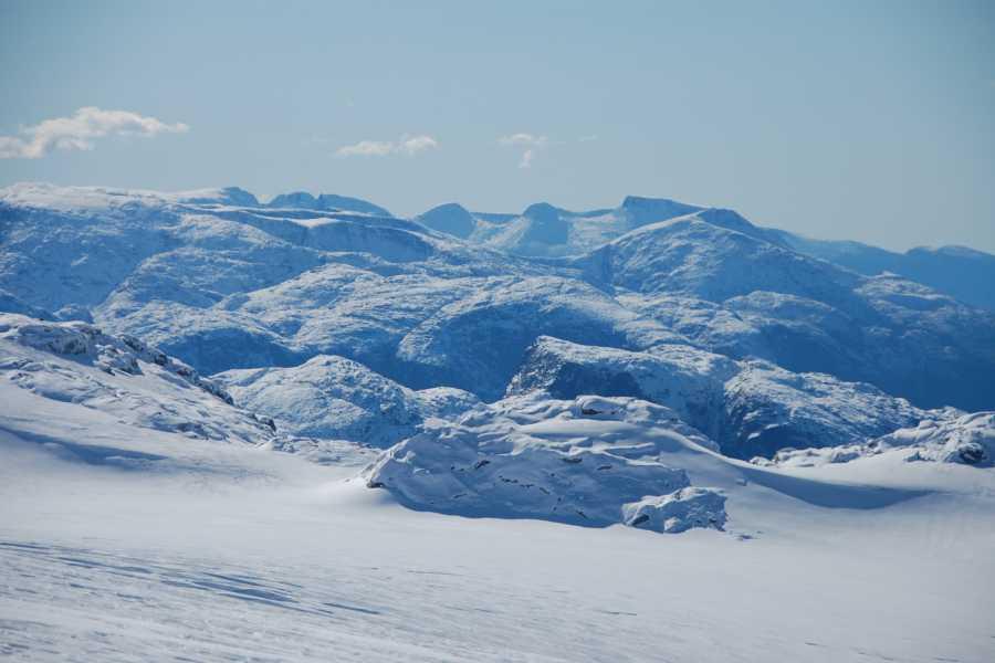 Folgefonni Breførarlag AS Glacier Snowshoeing