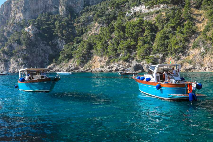 Travel etc Discover Capri from Sorrento
