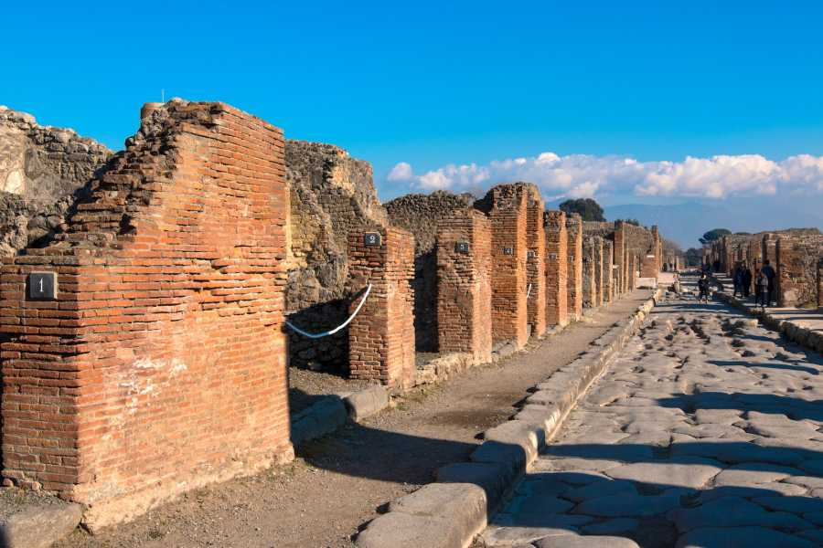Travel etc Pompeii & Mount Vesuvius by boat