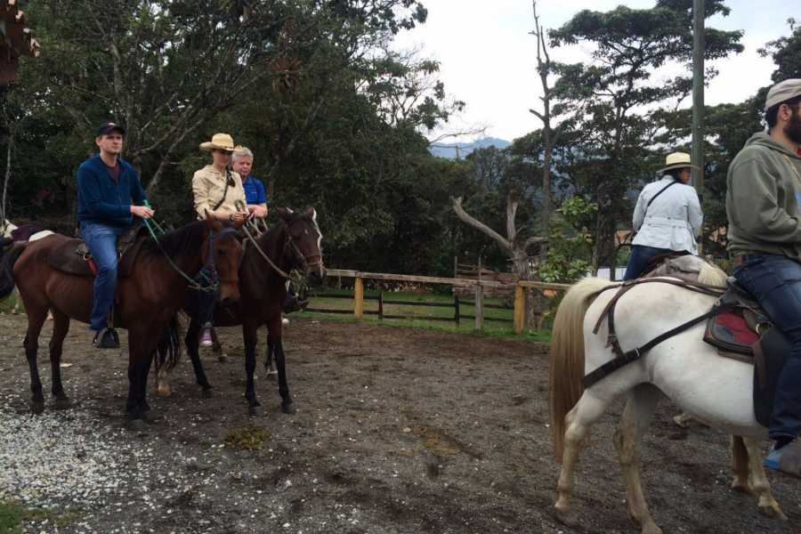 Medellin City Services SUPER SAVER: Medellin City Tour + Horse Ride + Food Tour