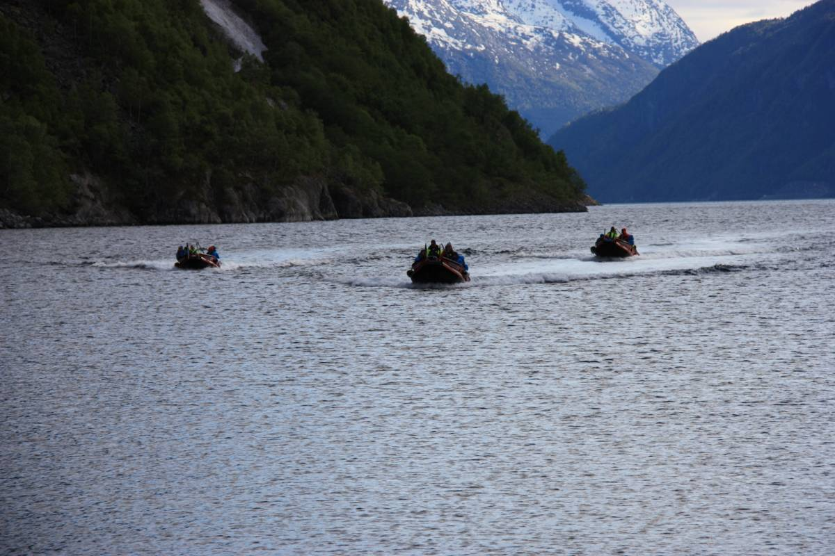 B-Nature A/S FJORD BOAT FULL DAY EXCURSION