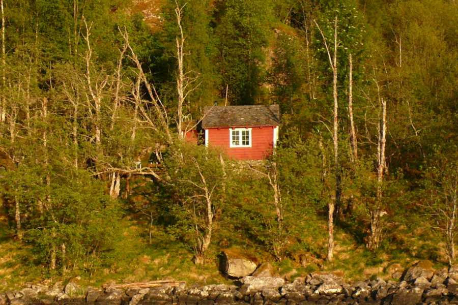 Be Nature Drift AS PRIVATE FJORD BOAT FULL DAY EXCURSION