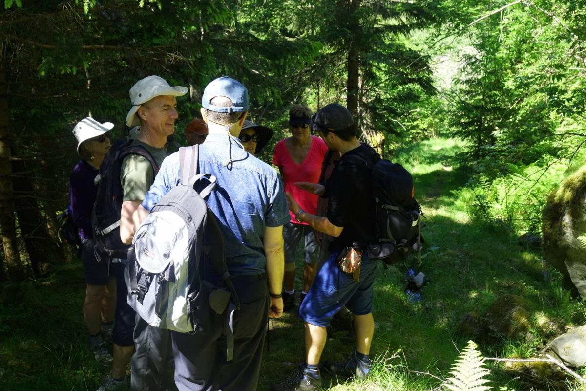 B-Nature A/S GUIDED NATURE WALK ULVIK