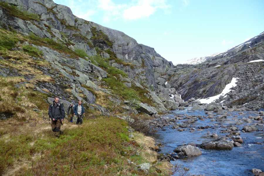 Be Nature Drift AS GUIDED NATURE WALK ULVIK