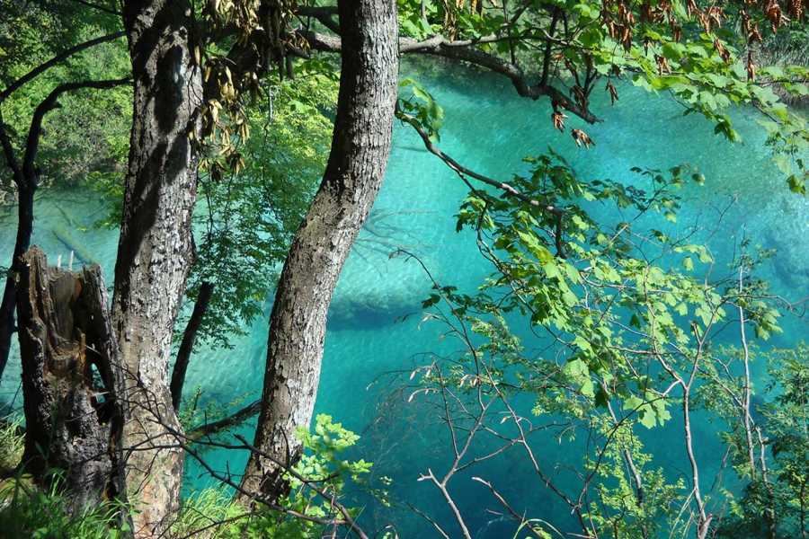 Sugaman Tours National Park Plitvice Tour