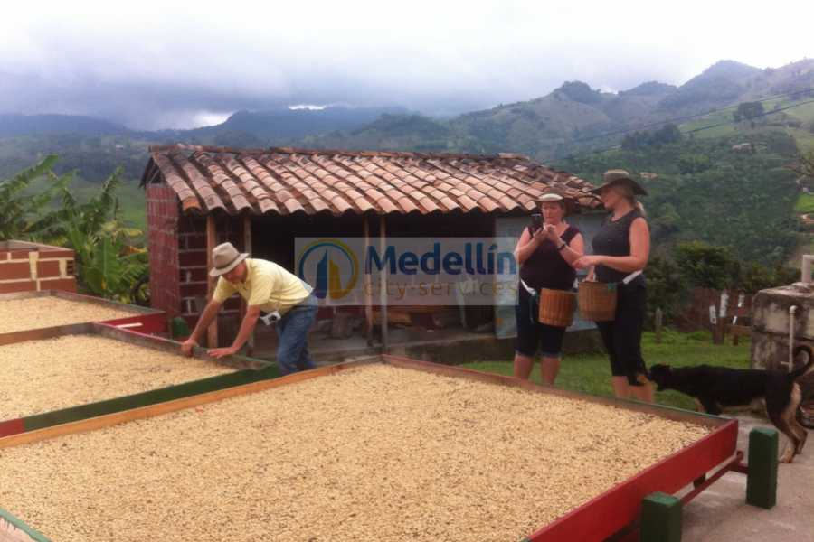 Medellin City Tours SUPER SAVER: Medellin City Tour + Jerico Coffee Tour + Food Tour