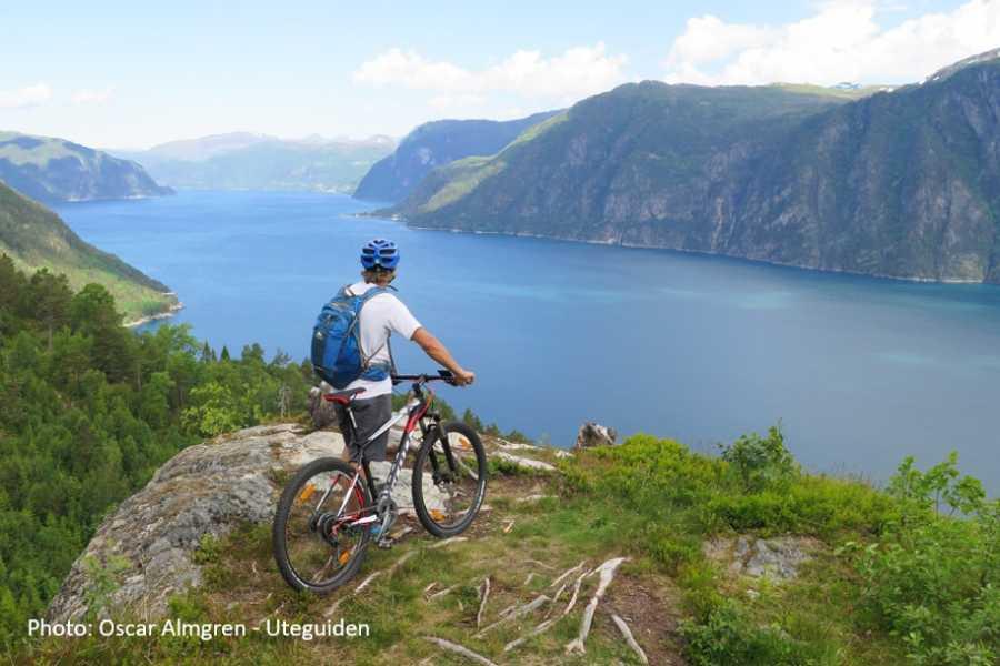 Travel like the locals (Møre og Romsdal) Round trip to Stranda & Storfjord