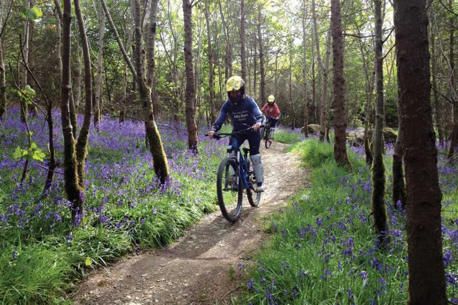 Bike Park Ireland Kids Bike Half Day Pack 8-12yrs (Bike + Uplift) €45 (Online €42)