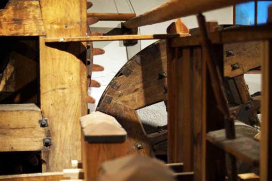 BaselCitytour.ch 09 - Papiermühle