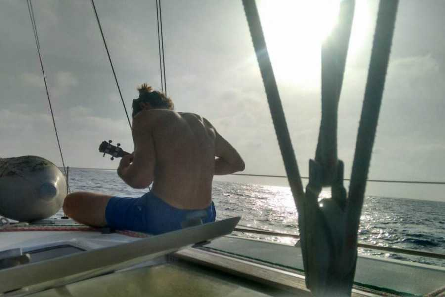 Cacique Cruiser BOAT TO COLOMBIA - Koala Sailboat