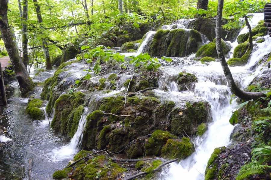 Sugaman Tours Private Tour to Plitvice Lakes