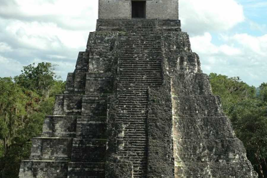 Cayo Inland Expeditions Tikal Maya Temple City