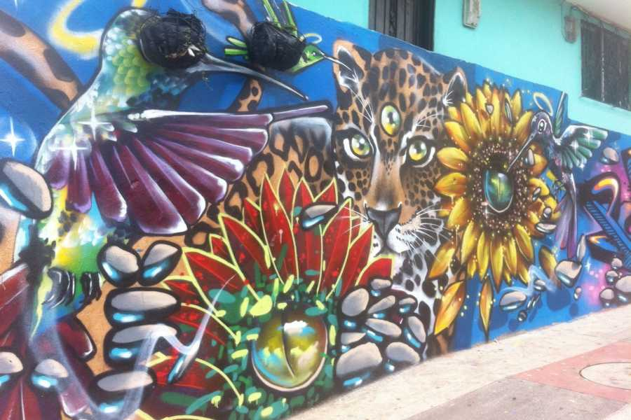 Medellin City Services BoGo Tour: 	BOOK STREET ART TOUR AND GET FREE FOOD TOUR