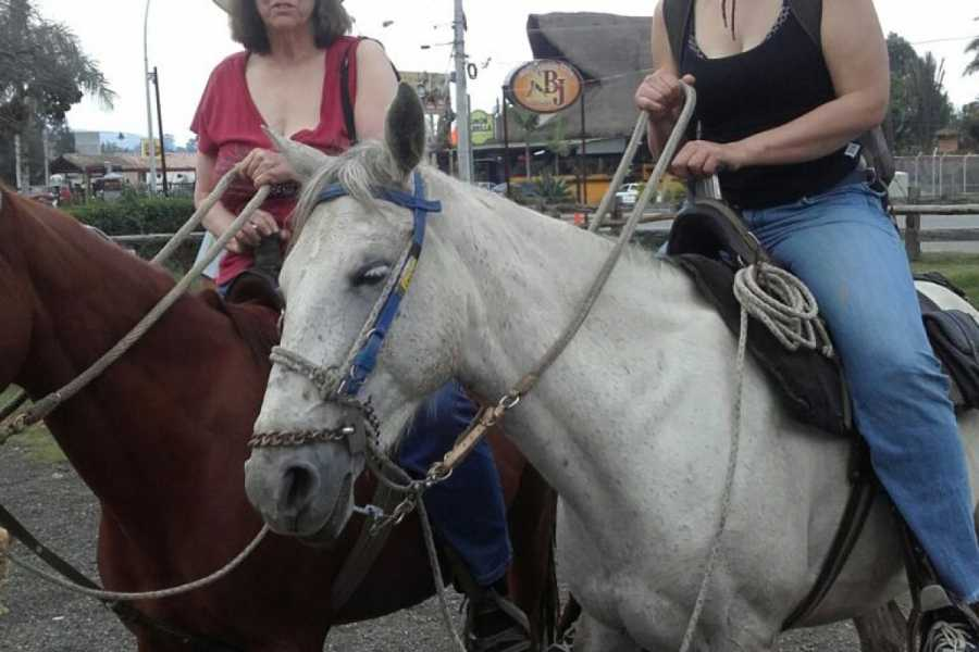Medellin City Tours BoGo Tour:  	BOOK HORSE RIDE AND GET FREE FOOD TOUR