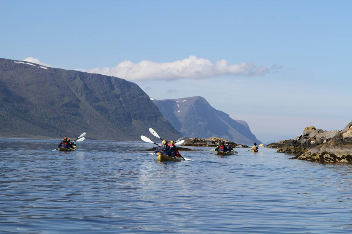 Kayak More Tomorrow The Ultimate Exploration of Norway's Art Nouveau City