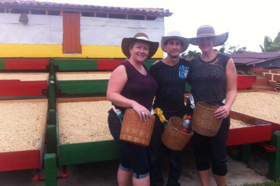 Medellin City Tours SHARED COPACABANA EXPRESS COFFEE TOUR