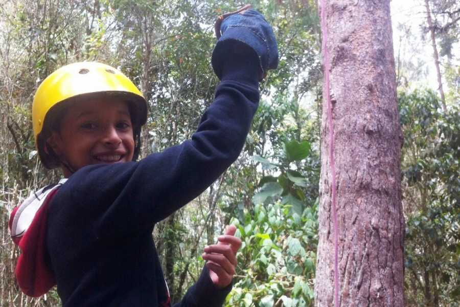 Medellin City Services SHARED ZIP LINES