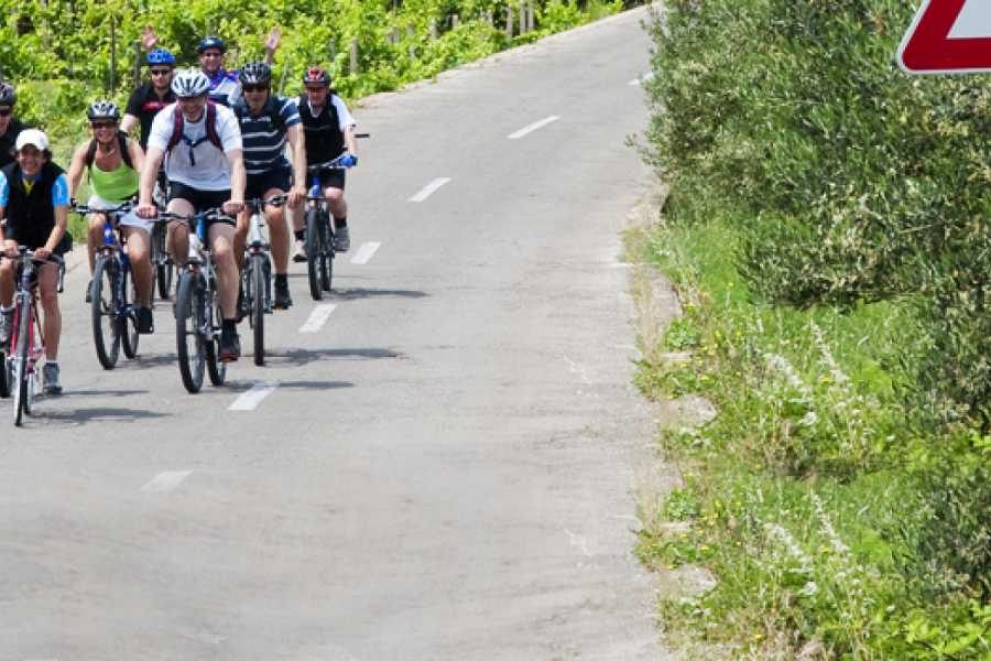 Aktivni Odmor Cycling through UNESCO heritage
