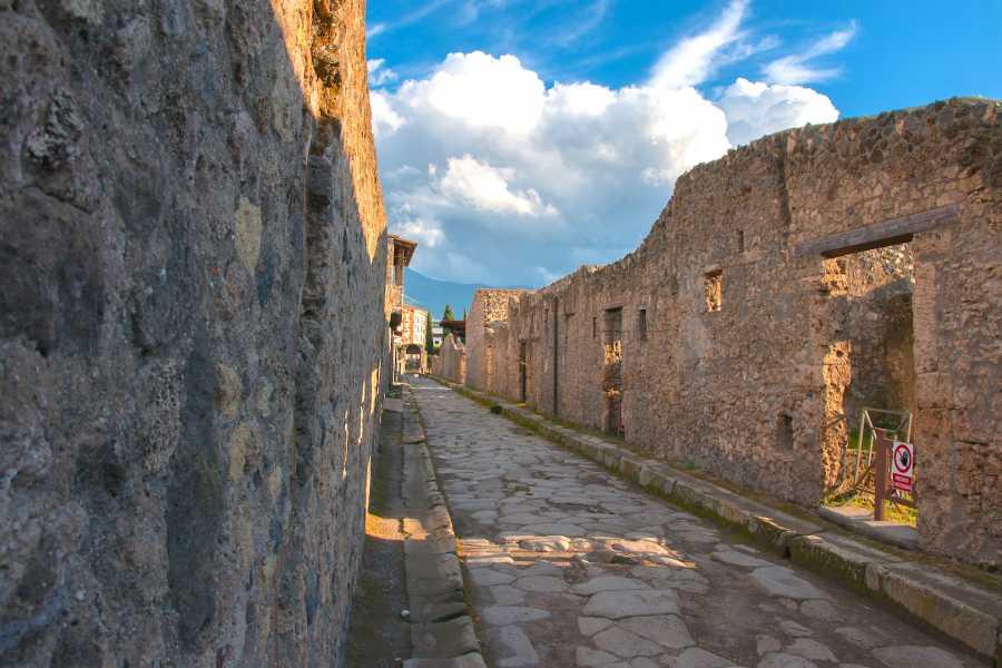 Travel etc Pompeii Half Day Group tour