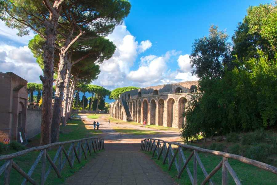 Travel etc Pompeii Half Day