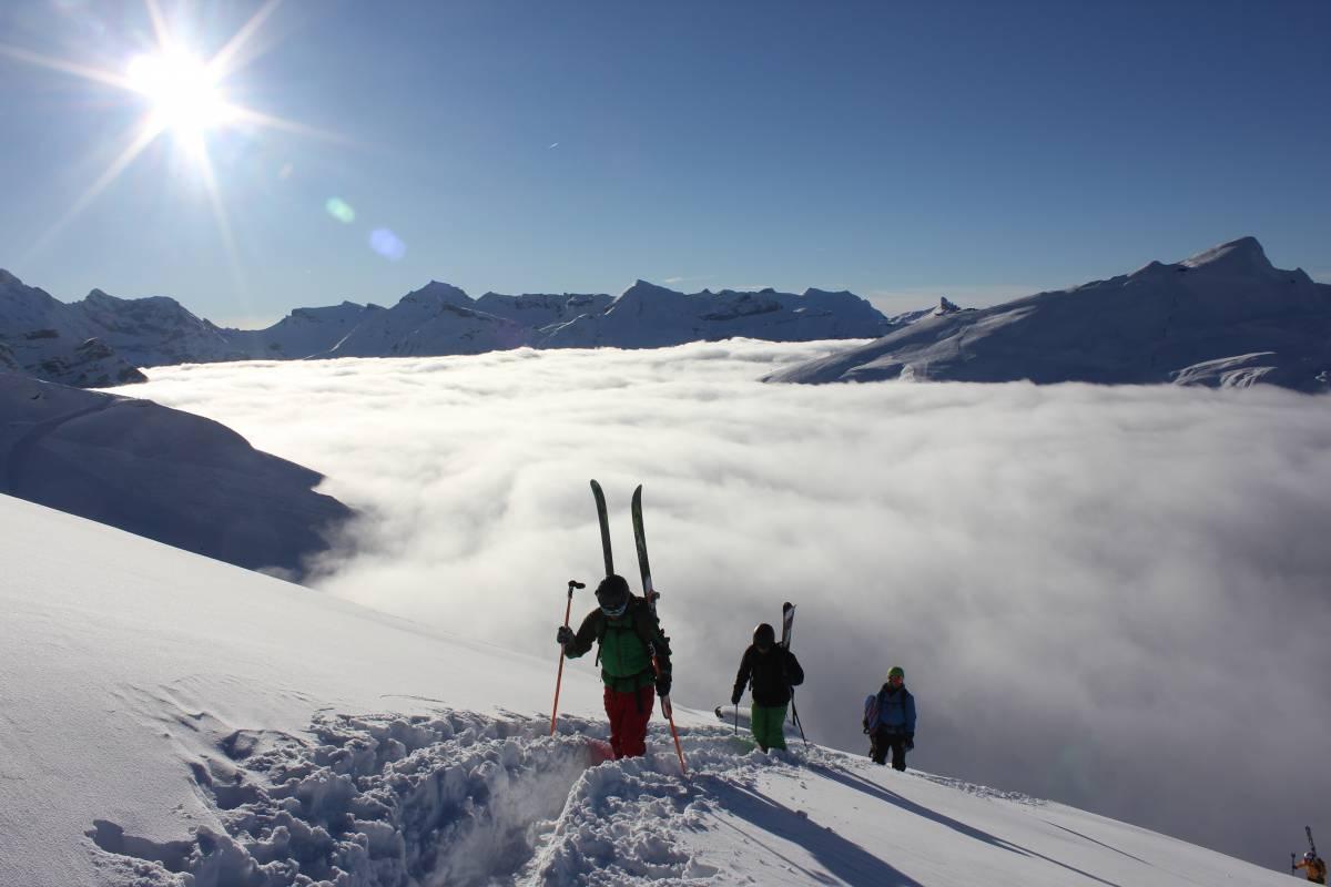 Swiss Alpine Guides Freeride - Off piste