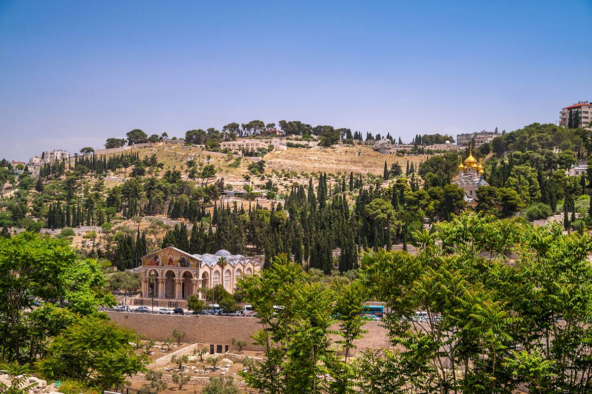 SANDEMANs NEW Jerusalem Tours Jerusalem's Mount of Olives Tour