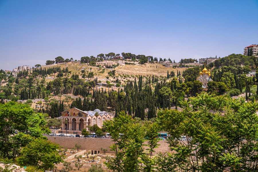 SANDEMANs NEW Jerusalem Tours Jerusalem's Mount of Olives Tour