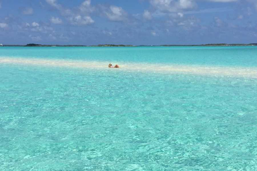 ExumaEscapes SWIMMING PIG BOAT TOUR SALE!!! - Nassau to Exuma Direct