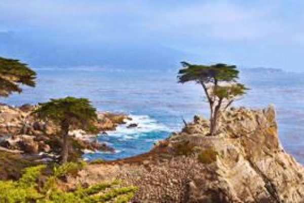 1 Day Monterey Bay, Camel,17 Miles Scenic Drive