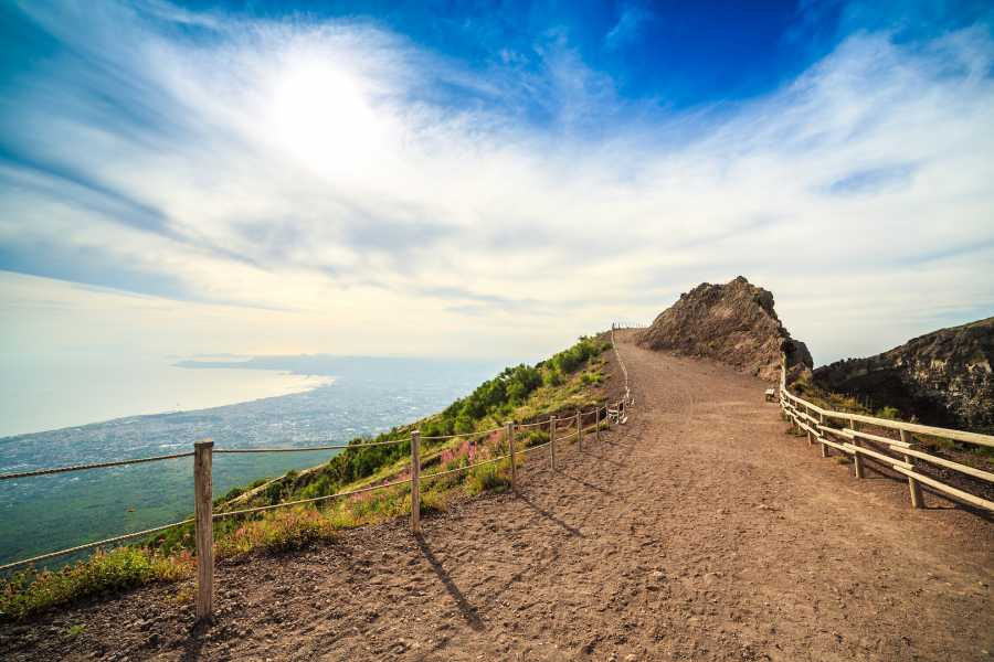 Travel etc Mount Vesuvius Half Day