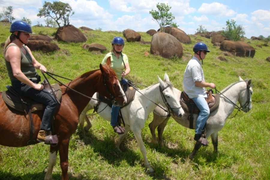 Around SP TOUR A FAZENDA HISTÓRICA (8 hrs)