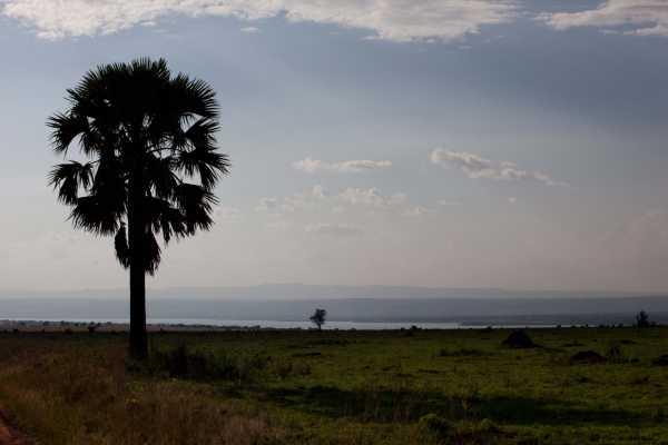 3 Days Private Murchison Falls Safari