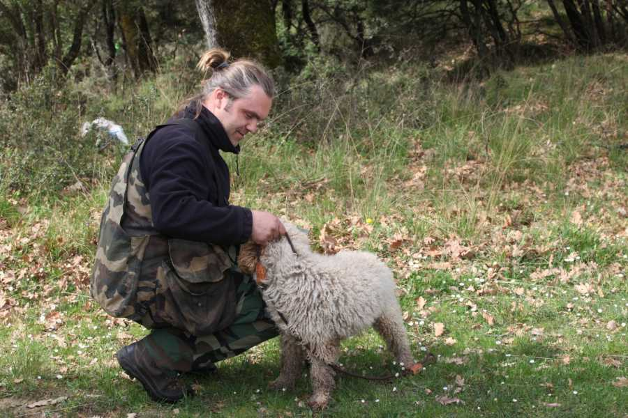 Visit Meteora Private Meteora Truffle Hunting and Lunch