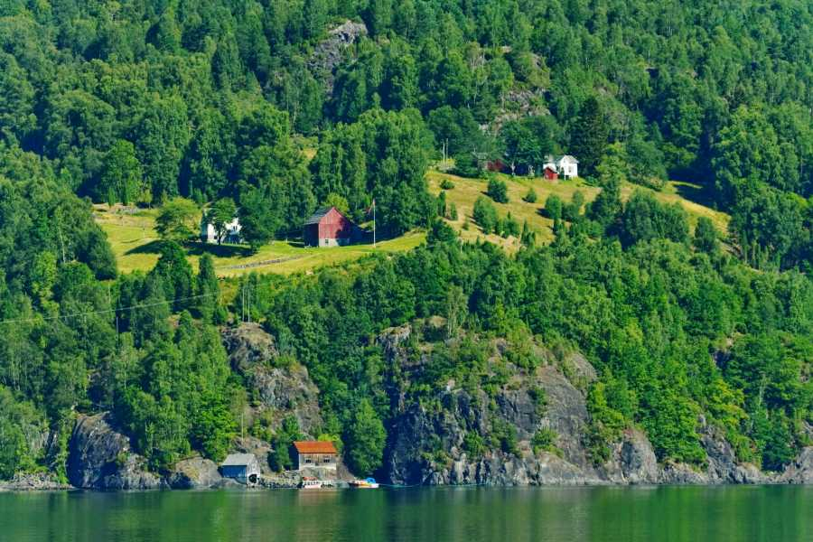 Åkrafjorden Oppleving AS Fjordcruise to Langfoss Waterfall