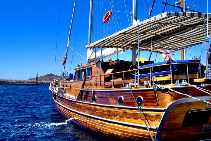 BarefootPlus Travel Aegean Sailing- 8 Glorious Days