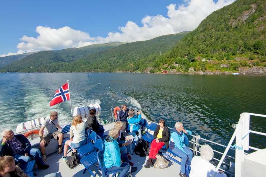 Åkrafjorden Oppleving AS Fjord Cruise for Groups: Langfoss Waterfall and Åkrafjord