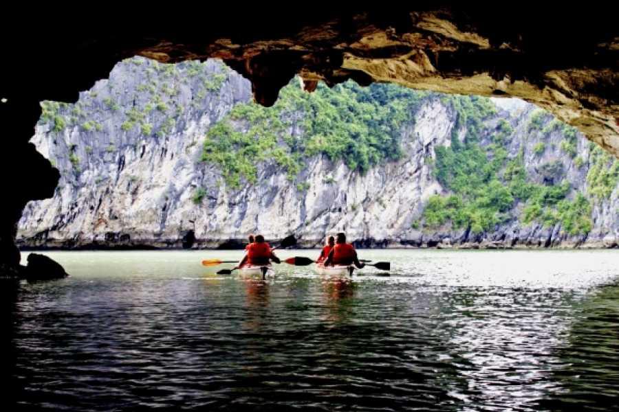 Vietnam 24h Tour Alova Gold Cruise 2D1N