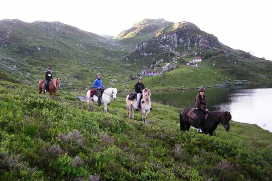 Åkrafjorden Oppleving AS Riding Trip to Vika Mountain Pasture