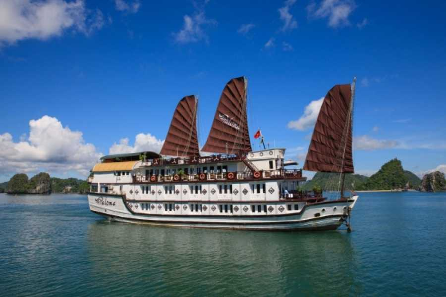 Vietnam 24h Tour Paloma Cruise 2D1N