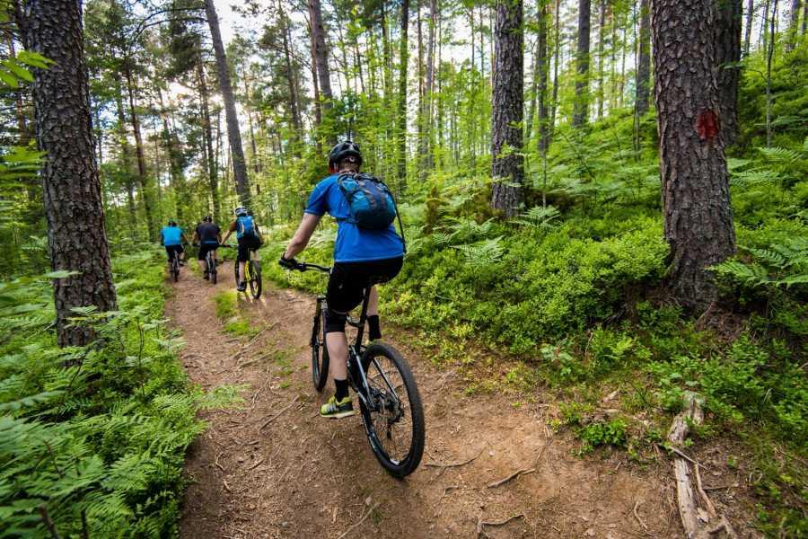 Nordfjord Aktiv Bike rental MTB