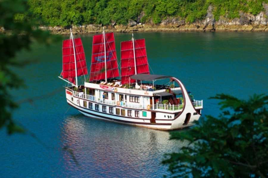 Vietnam 24h Tour Scorpion Cruise 2D1N