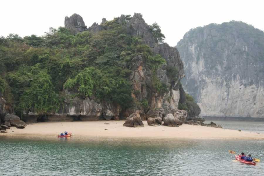 Vietnam 24h Tour V-Spirit Classic Cruise 3D2N