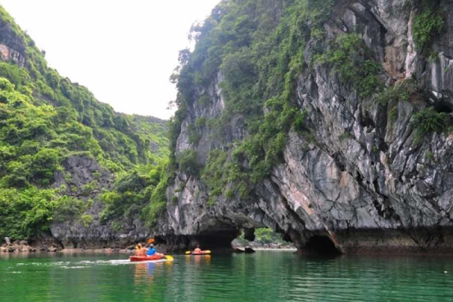 Vietnam 24h Tour V-Spirit Classic Cruise 2D1N