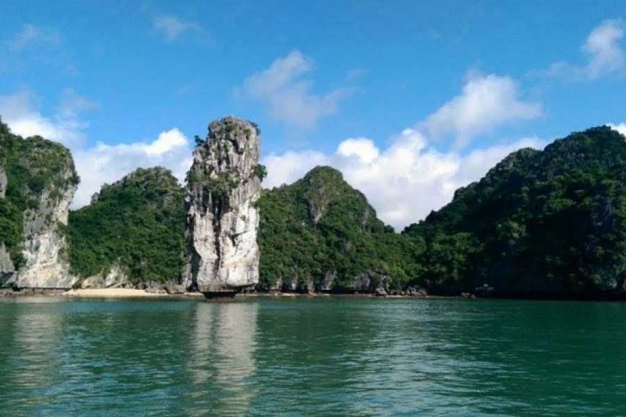 Vietnam 24h Tour The Real Halong Bay Private Cruise Experience 3D2N | Option A