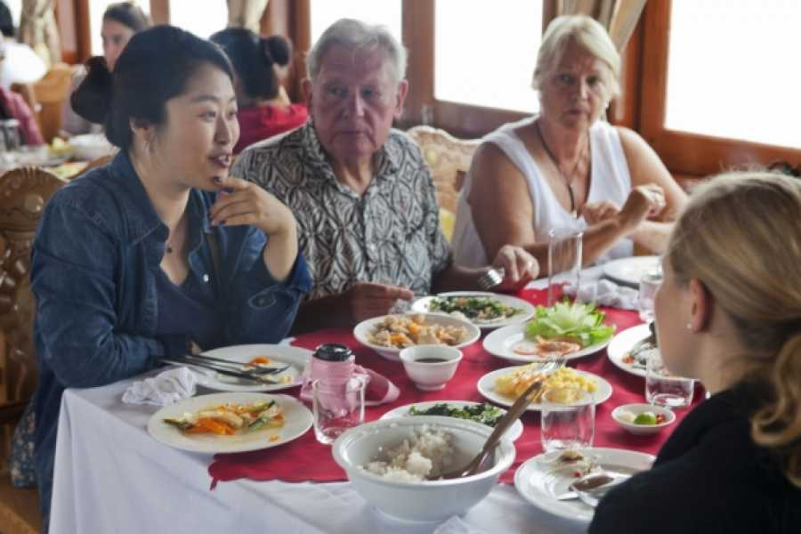 Vietnam 24h Tour Halong Bay Alova Day Cruise Tour