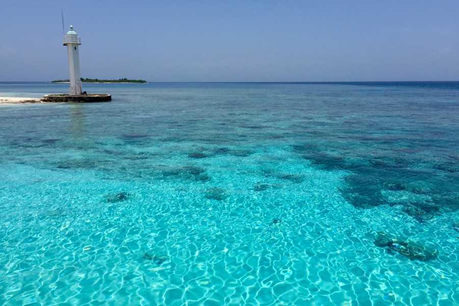 Marina Blue Haiti Excursion à l'Anse a Galets et aux îles Arcadins
